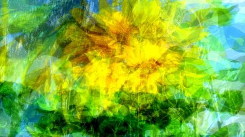 20121009210535-summer_wind_gust