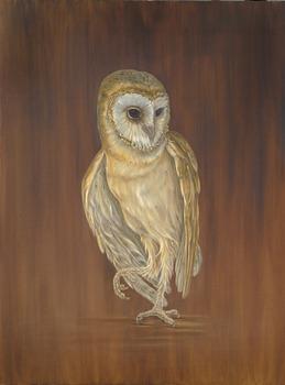 20121010232233-white_owl_smallermed_res