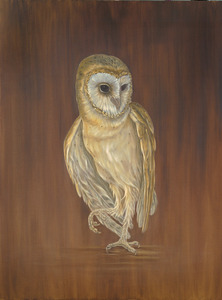 20121010232518-white_owl_smallermed_res