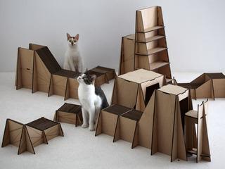 20121012000915-model-performing-cats_01_550x412