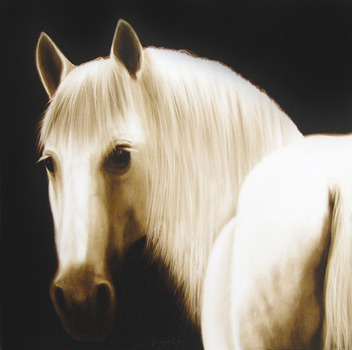 20121013071805-the_filly_peter_hickey_77x77cm_karinwebergallery_web