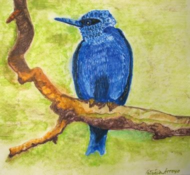 Black_as_blue_bird