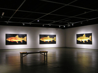 20121023055846-installation-view-3_-donald-g-longcrier_native-trout-of-the-american-west_hulsey-gallery_oklahoma-city-university_2007