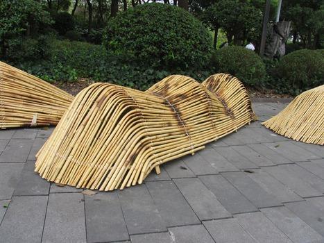 20121023113243-bamboo4