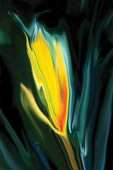20121103192047-flower-unknown-5