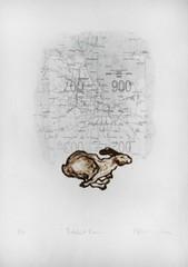 20121108012706-kate-peters-rabbit-run-300x426