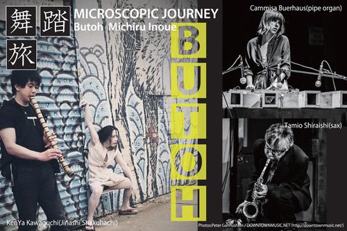 20121108042518-front_microscopic_journey