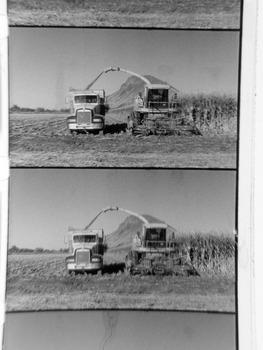 20121111223549-empty_quarter-corn_cutz-300ppi_smaller_
