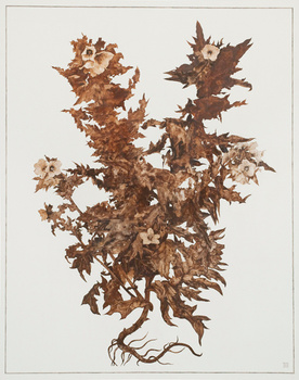 20121113133242-slaves_by_choice_xi__2012__rust_on_paper__102_x_81