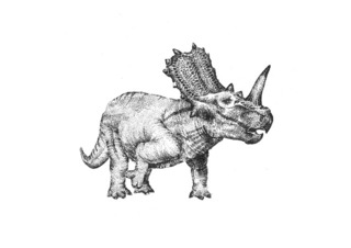 20121114145651-triceratops_20web_640