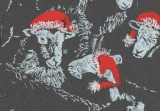 20121117183614-melanie_paice_christmas_card_sheep_2