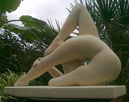 20121119121802-contorsion