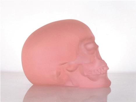 20121206085258-sl_2011_pink-skull_bc6028-bc6039_web