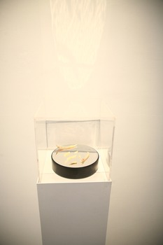 20121125094954-pei_li-artist_should_be_beautiful__installation__2012