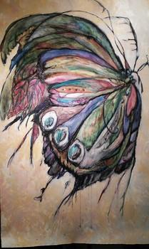 20121129042614-botterflye