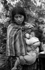 20121201014003-julia_madonna_and_child
