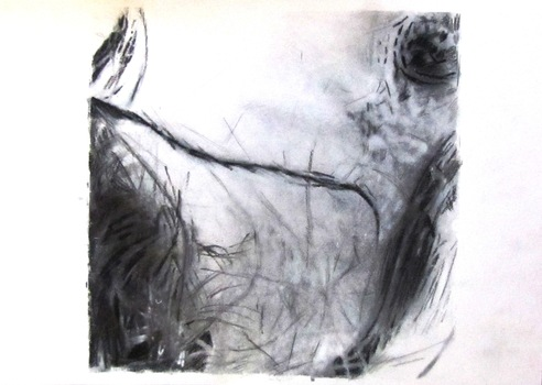 20121203195855-danae_study__charcoal__12