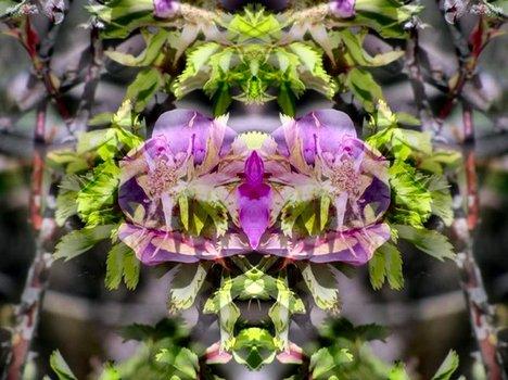 20121204210022-flower_15