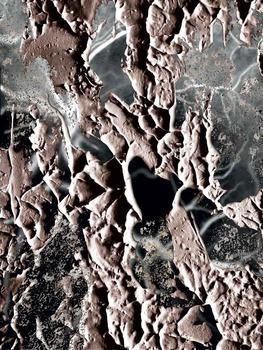 20121207125506-neuro-polvere
