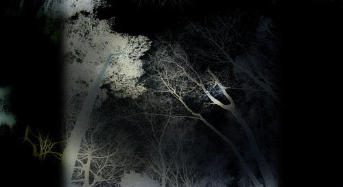 20121208182515-in_dreams_4