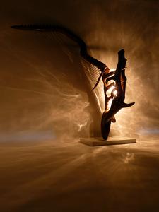 20121211111707-balletic_goniometer_1__4_