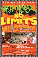 20121214165016-nynolimits_web