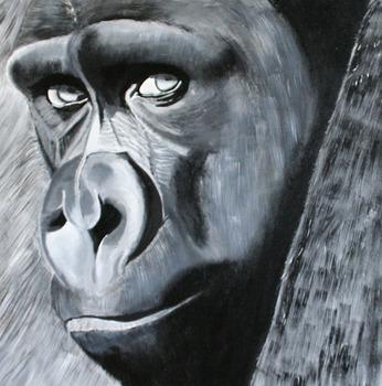 20121220201954-gorilla_in_the_mist_30