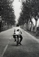 20121222041127-ellioterwitt_07_provence