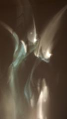 20130103162737-__mariposas_light_reflexl1440911