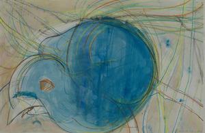 20130101215643-bluebird