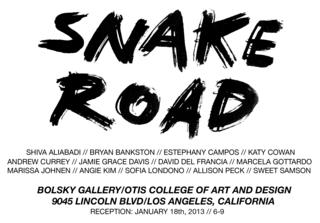 20130108040713-snakeroad