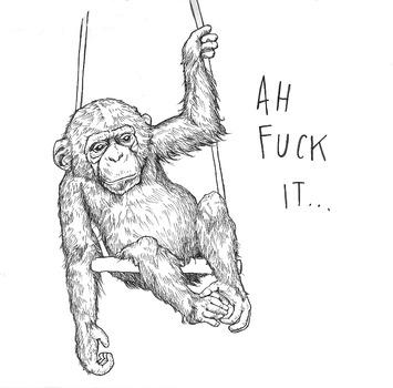 20130110200012-purje_chimp