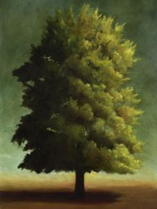 20100823150256-tree01