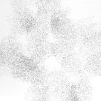 20130111061315-hydrangea10