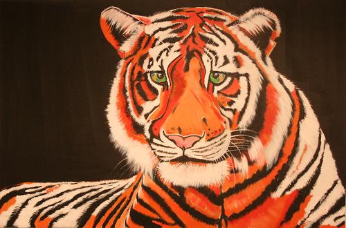20130111202118-orange_tiger_35