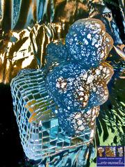 20130111231018-bluesphinxkopie