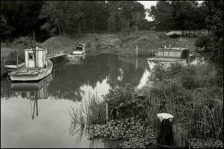 20130120233516-aac_img_exhibits_edward-weston_leaves-of-grass_lg