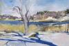 20130125011209-beaver_dam_sanctuary