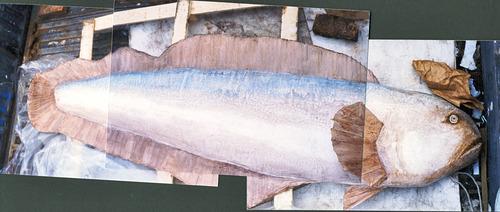 20130126040400-fish_in_truck