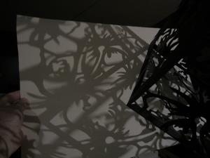 20130131235434-shadows_007