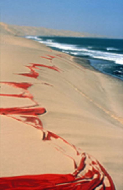 Papageorge_namibia_dunes121