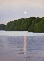 20130203221810-moon-light-on-lake-wisconsin-p