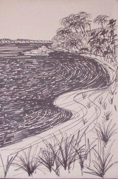 20130205050516-shelley_beach_drawing_2