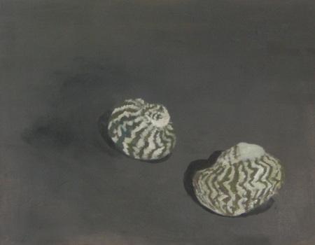 20130205052113-shells