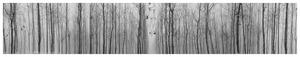 20130205173327-cui_xiuwen_existential_emptiness_no3_c-print_85x450cm_2009