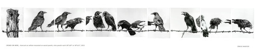 20130207172154-rick_shaefer_16_crows_on_wire_series