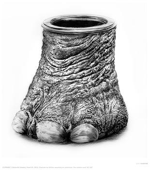 20130207174129-rick_shaefer_8_elephant_foot__1