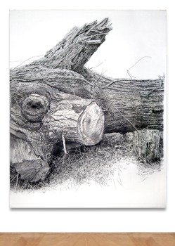 20130207175537-rick_shaefer_4_oak_drawing_central_panel