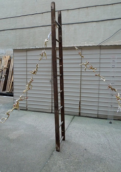 20130207223356-men_on_the_ladder