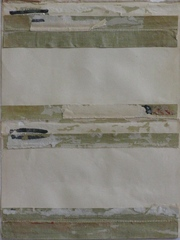 20130216070209-collected_covers_3